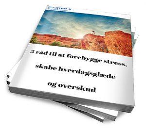 E bog om at forebygge stress