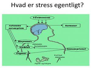 Stressramt